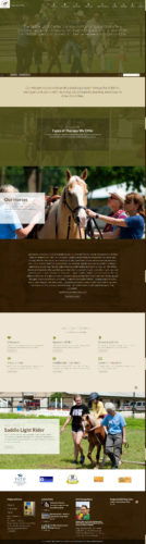Homepage Design for the Saddle Light Center